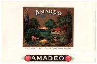 Amadeo Inner Box Art
