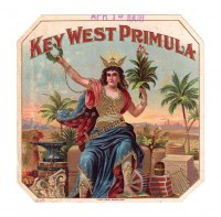 Key West Primula Outer Box Art