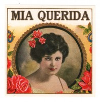 The Rose Lady - Mia Querida